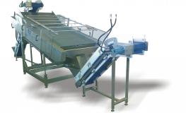 Scallop Flatbed Eviscerator